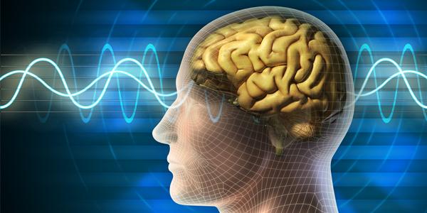 rewire-brain