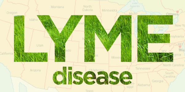 600x300-Lyme-Disease--The-Great-Masquerader