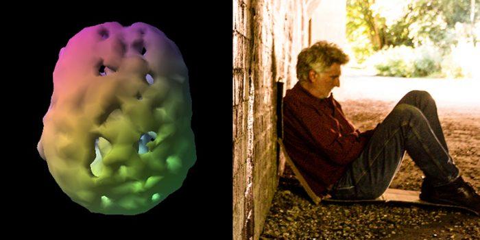 Blog-memory-toxic-exposure-many-ways-regain-brain