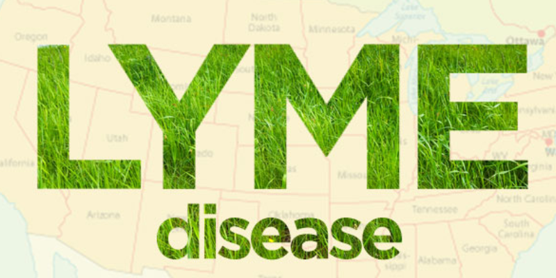 Blog-Lyme Disease The Great Masquerader
