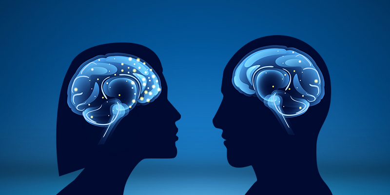 Women Have More Active Brains Than Men-Email800x400