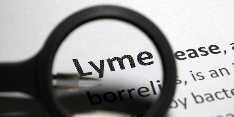 Am I Losing My Mind, Or Is It Lyme Disease?