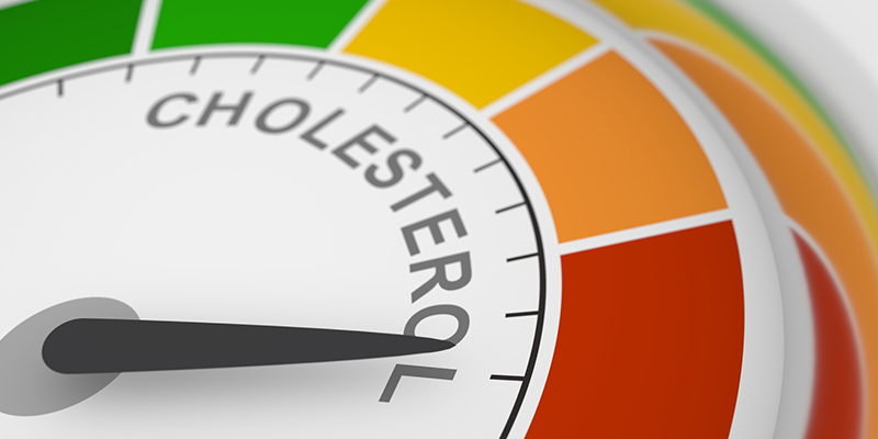 Why Your Brain Needs Cholesterol