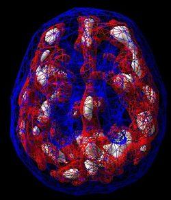 Elisa Lam Docuseries and Bipolar Disorder